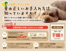 7月のキャンペーン!!